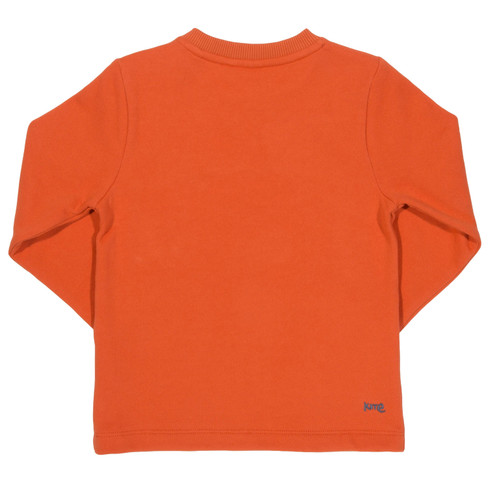 Sweat-Pullover mit Fuchs-Applikation, orange